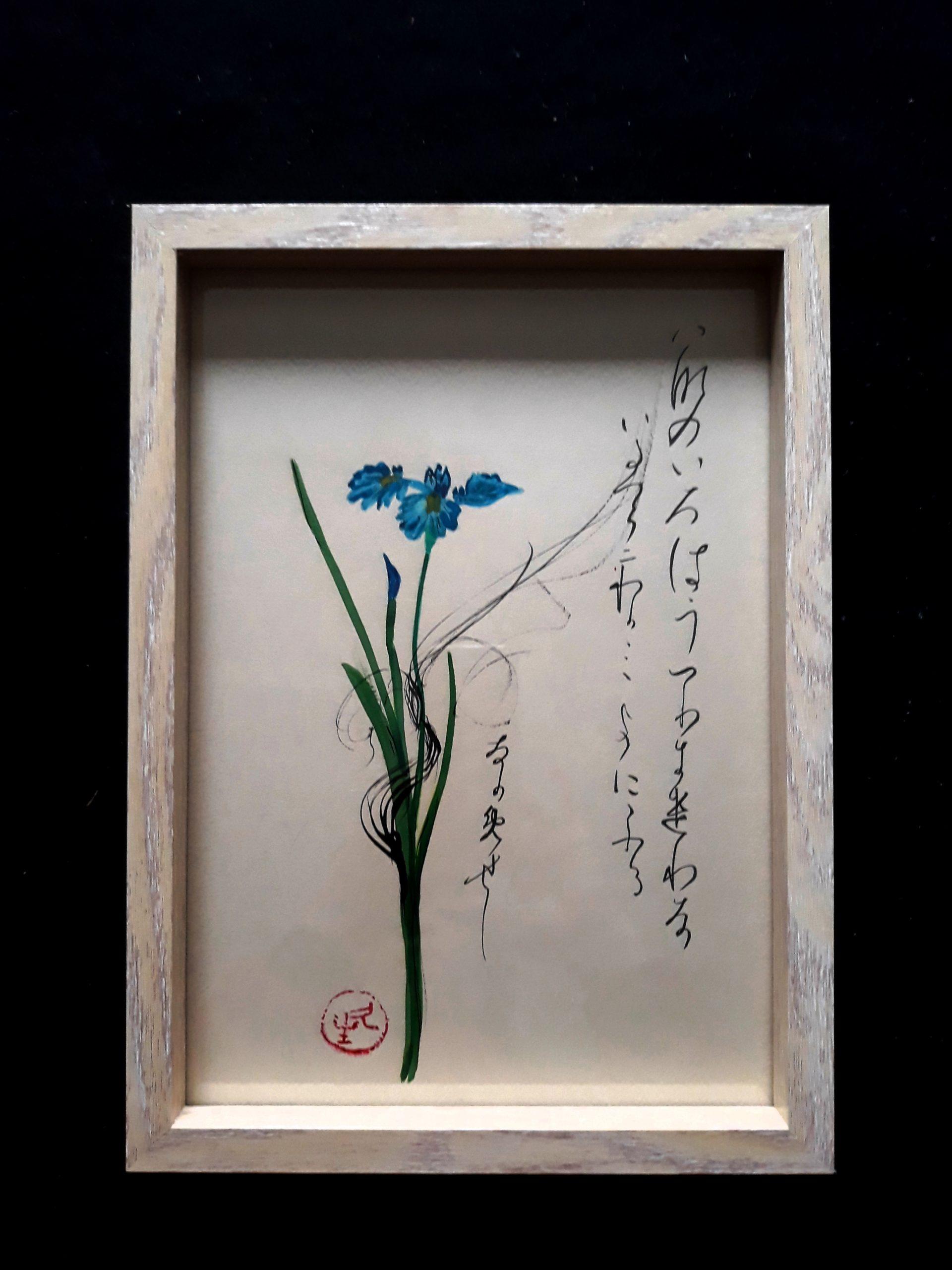 VENDU iris sanguinea avec Waka (Onono Komatchi)